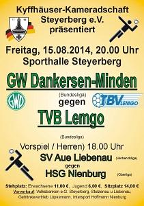Handballbundesliga 2014 Aug 15.